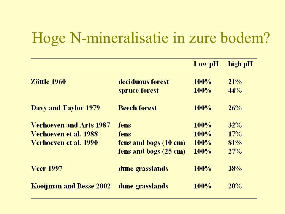 Hoge N-mineralisatie in zure bodem