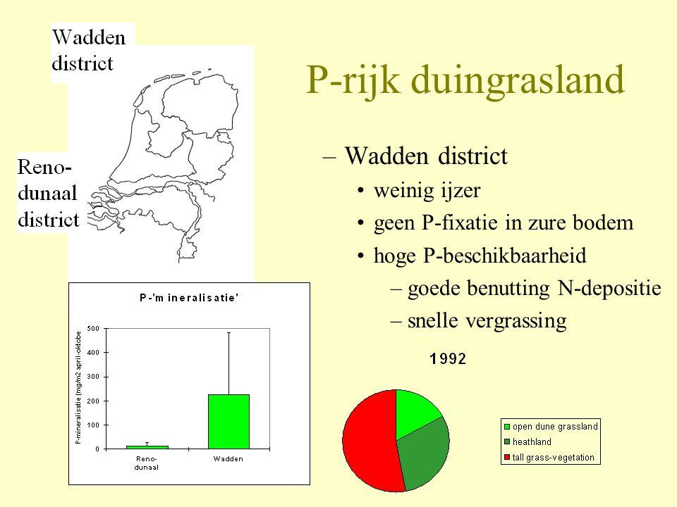 P-rijk duingrasland Wadden district weinig ijzer