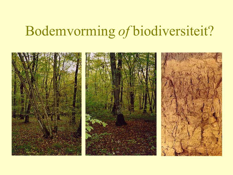 Bodemvorming of biodiversiteit