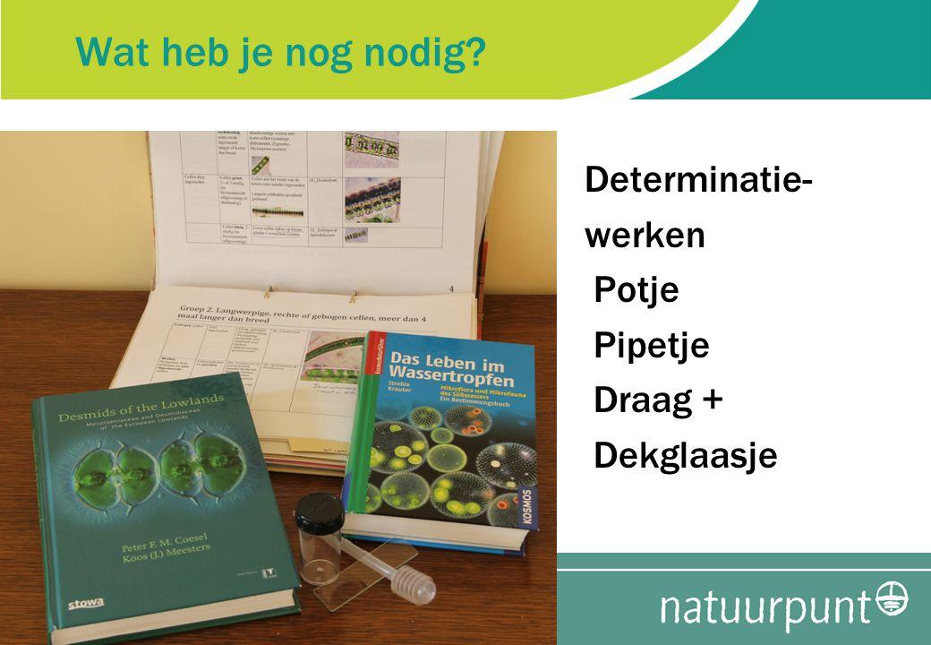 Wat heb je nog nodig Determinatie- werken Potje Pipetje Draag +