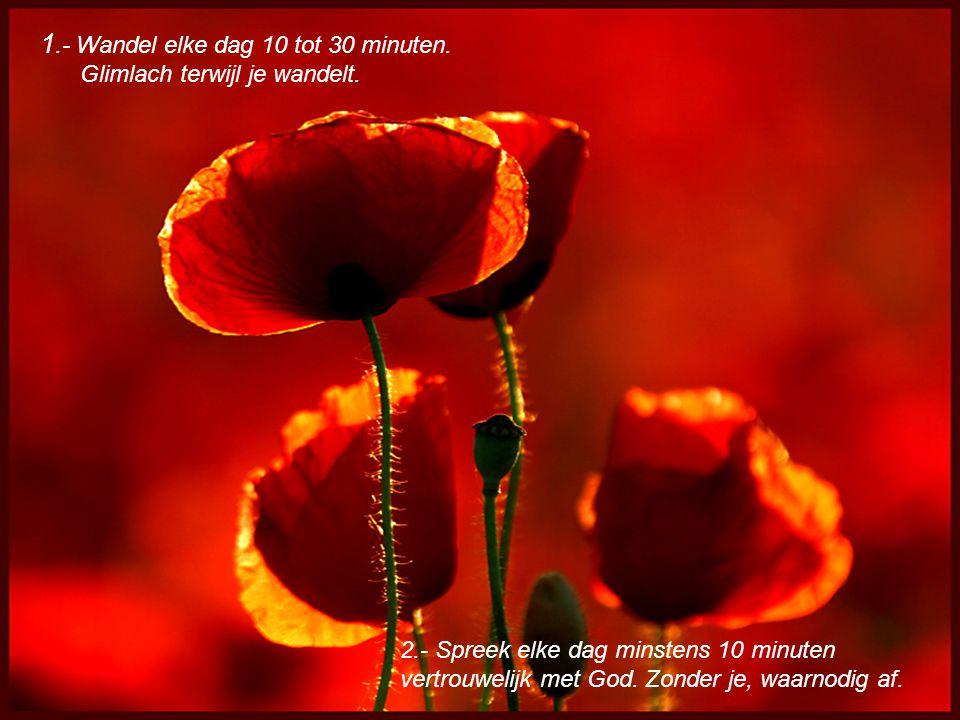 1.- Wandel elke dag 10 tot 30 minuten.