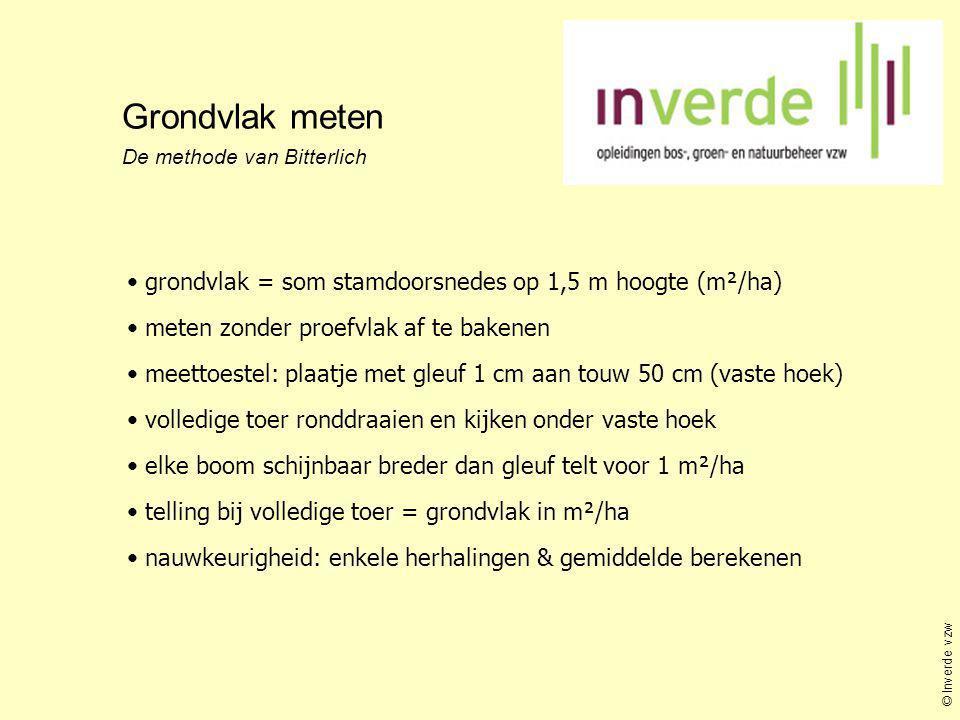 Grondvlak meten grondvlak = som stamdoorsnedes op 1,5 m hoogte (m²/ha)