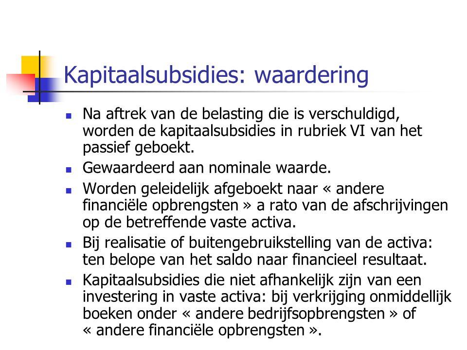 Kapitaalsubsidies: waardering