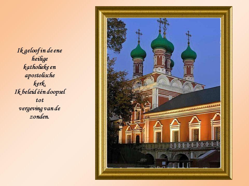 Ik geloof in de ene heilige katholieke en apostolische kerk.