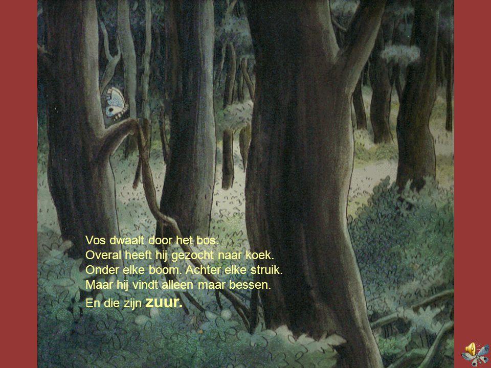 Vos dwaalt door het bos. Overal heeft hij gezocht naar koek. Onder elke boom. Achter elke struik. Maar hij vindt alleen maar bessen.