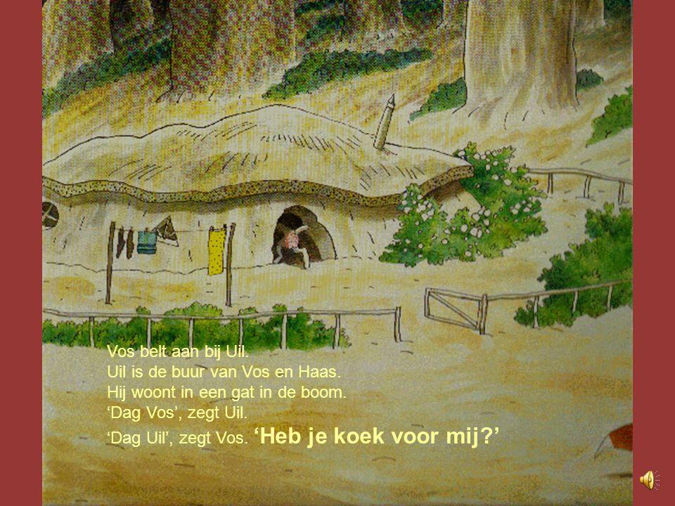 Vos belt aan bij Uil. Uil is de buur van Vos en Haas. Hij woont in een gat in de boom. 'Dag Vos', zegt Uil.