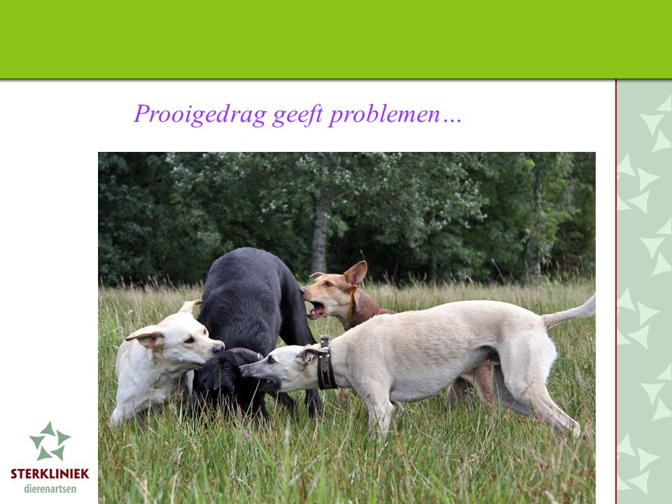 Prooigedrag geeft problemen…