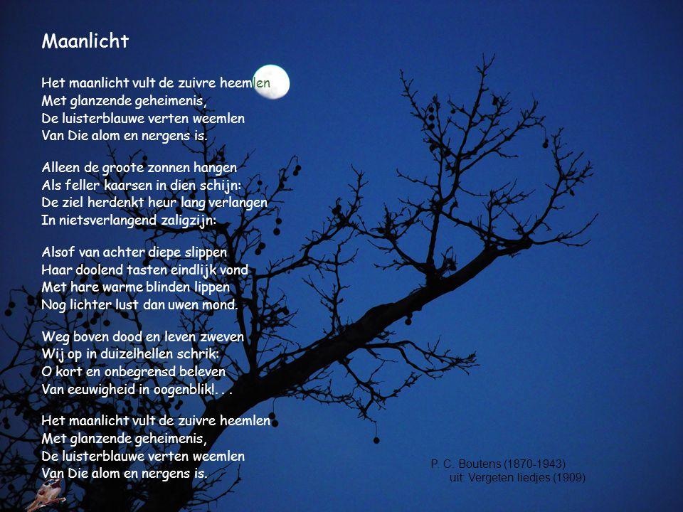 Maanlicht Het maanlicht vult de zuivre heemlen
