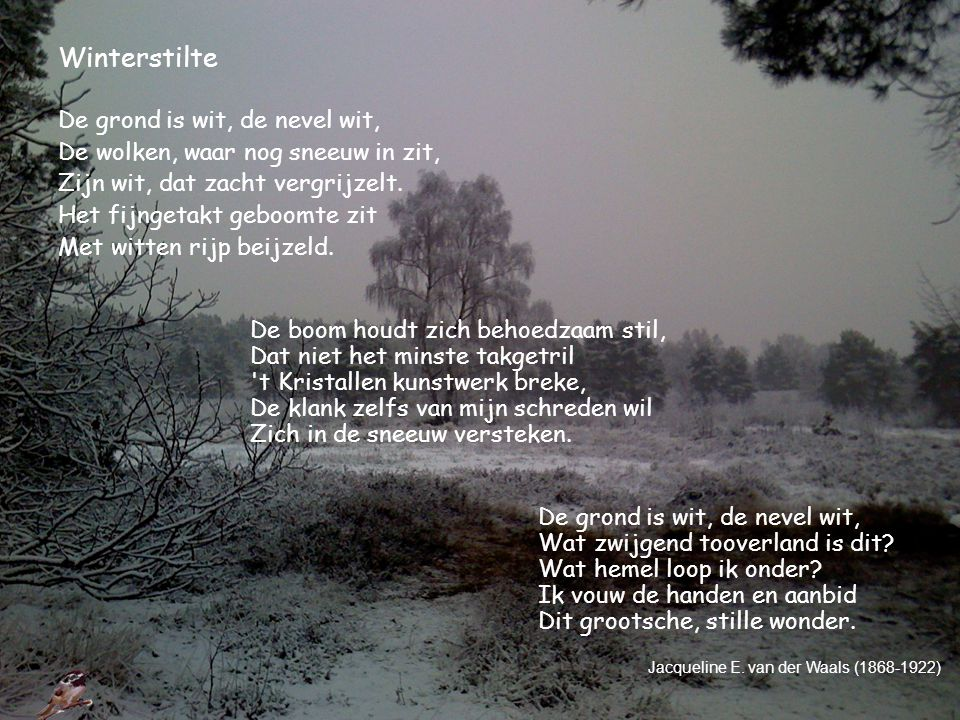 Winterstilte De grond is wit, de nevel wit,