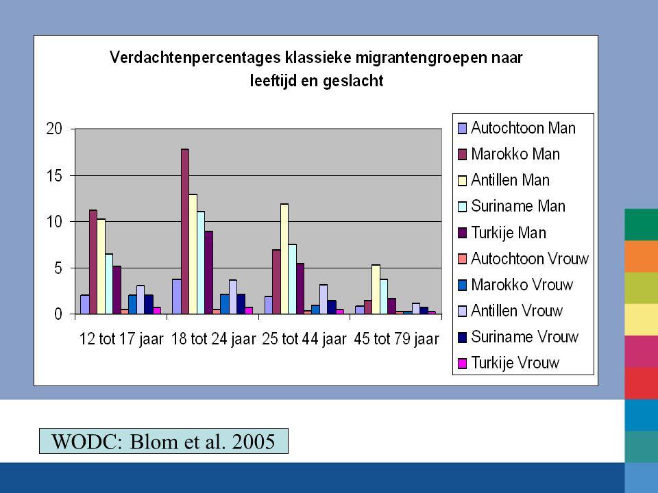WODC: Blom et al. 2005