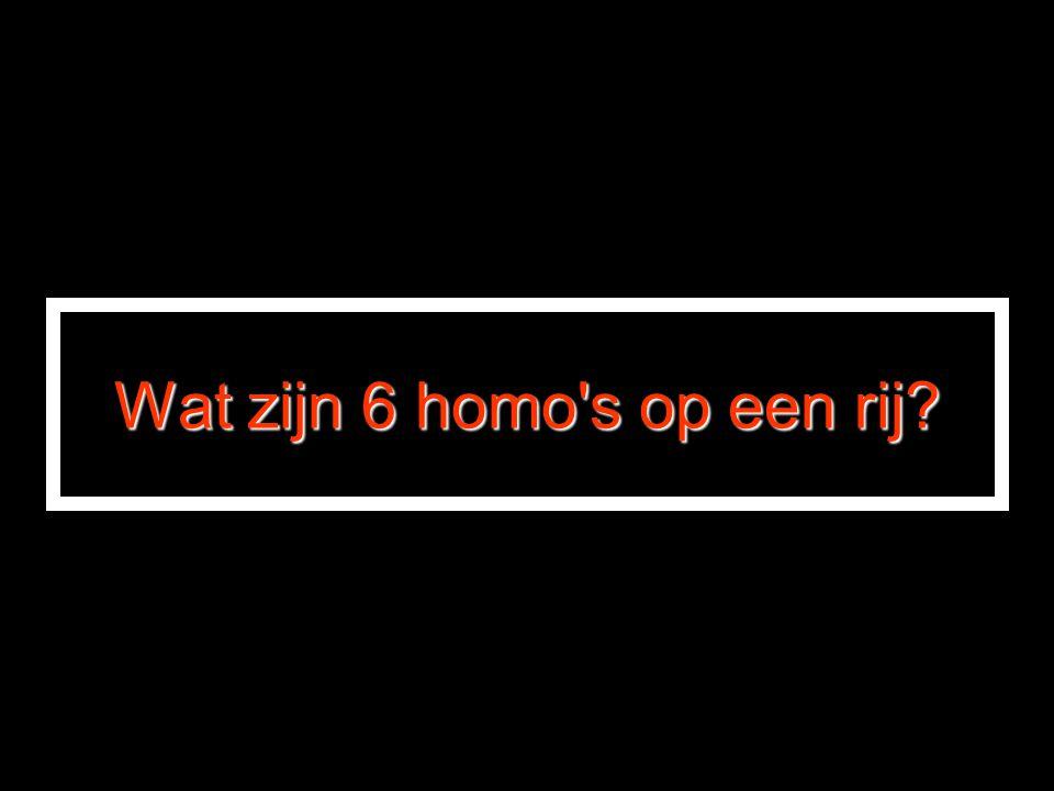 Wat zijn 6 homo s op een rij
