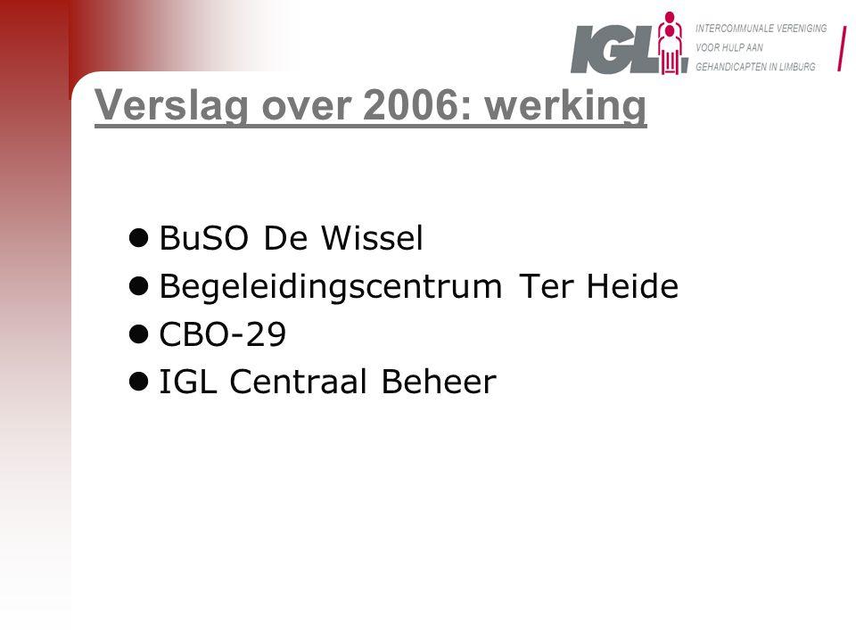 Verslag over 2006: werking BuSO De Wissel