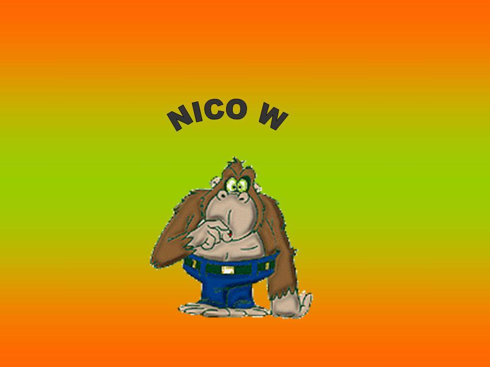 NICO W