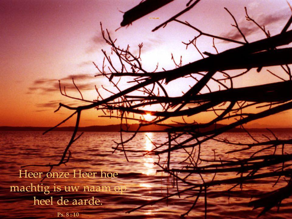 Heer onze Heer hoe machtig is uw naam op heel de aarde.