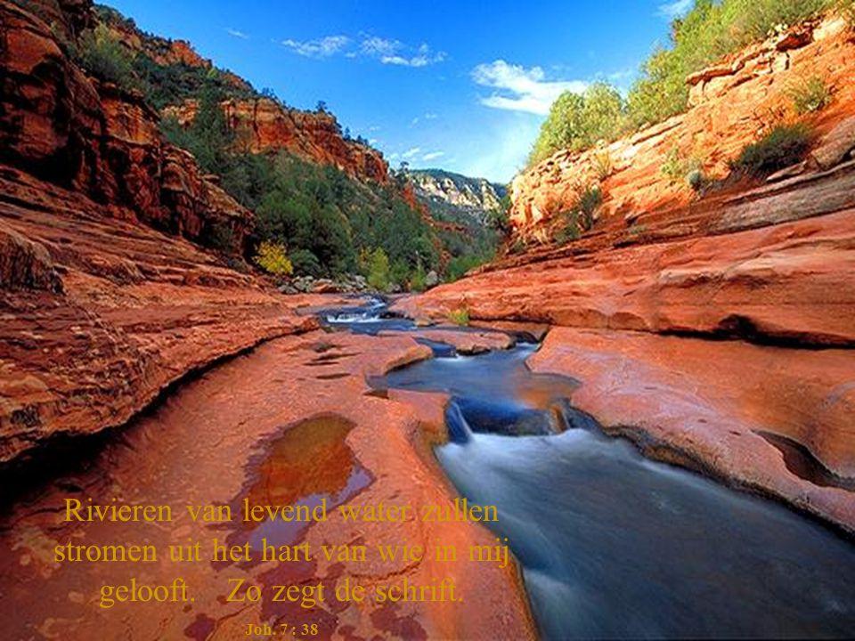 Rivieren van levend water zullen stromen uit het hart van wie in mij gelooft. Zo zegt de schrift.