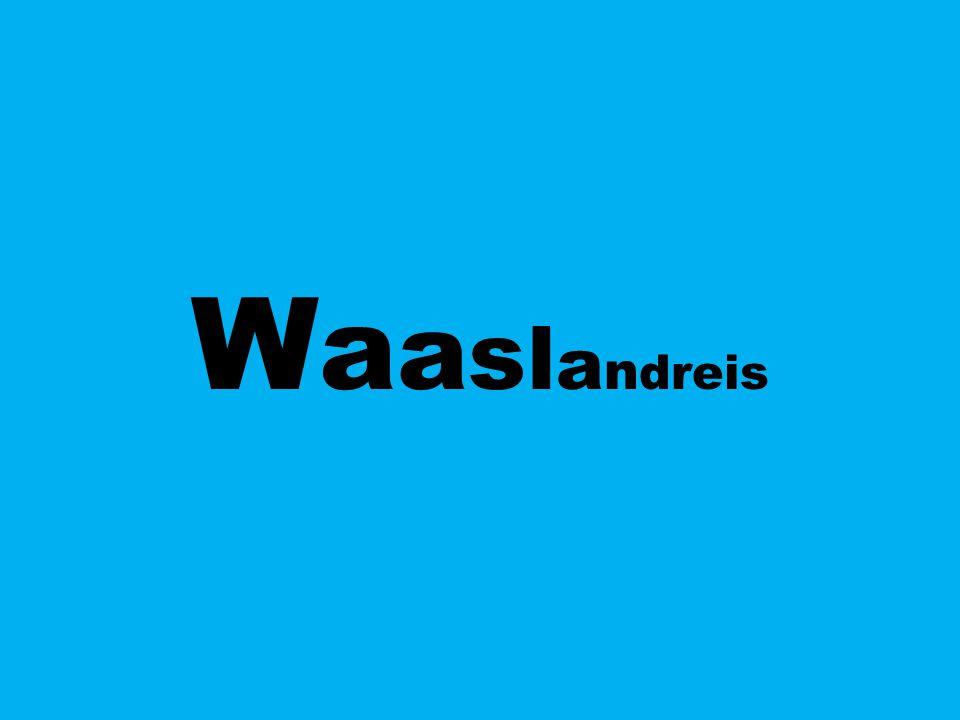 Waaslandreis