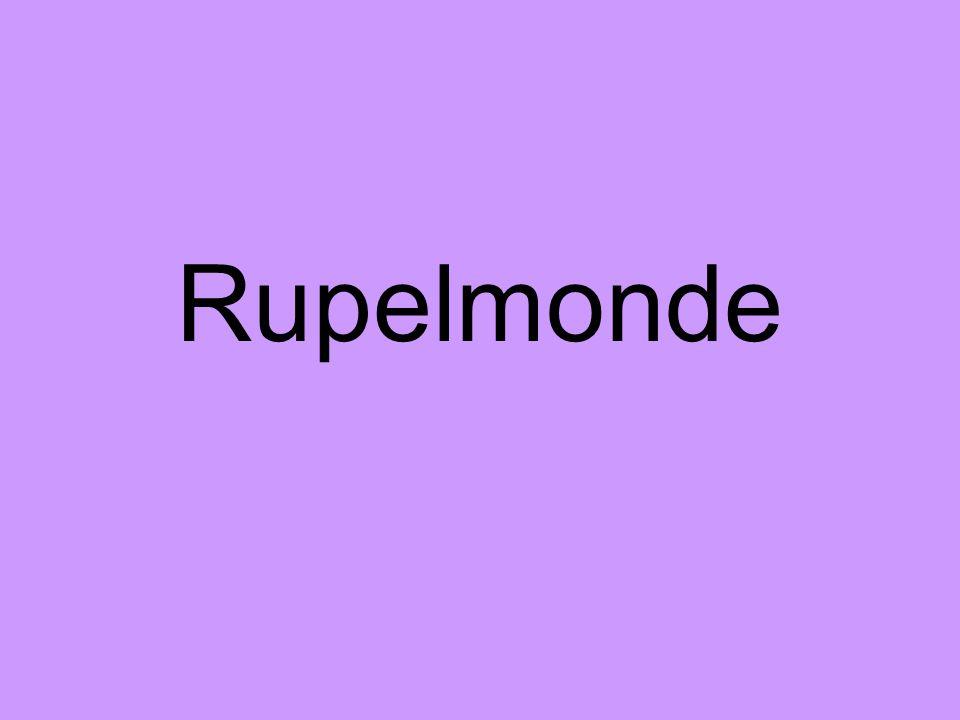 Rupelmonde