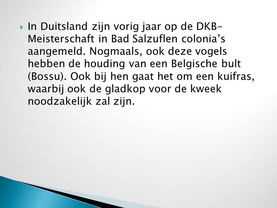 In Duitsland zijn vorig jaar op de DKB- Meisterschaft in Bad Salzuflen colonia's aangemeld.