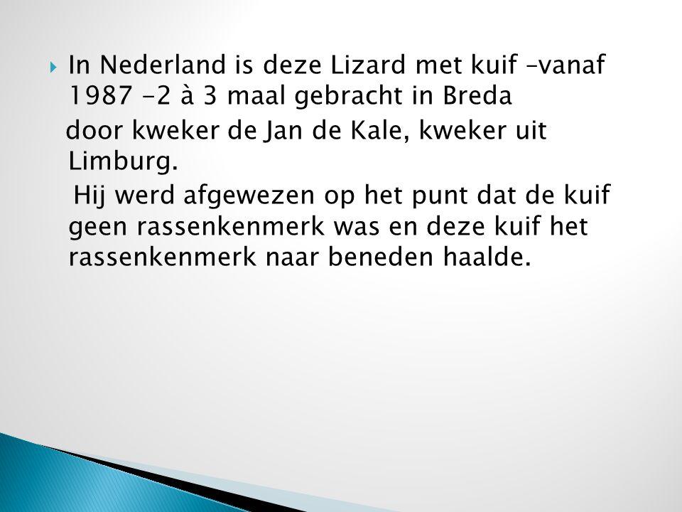 In Nederland is deze Lizard met kuif –vanaf 1987 -2 à 3 maal gebracht in Breda