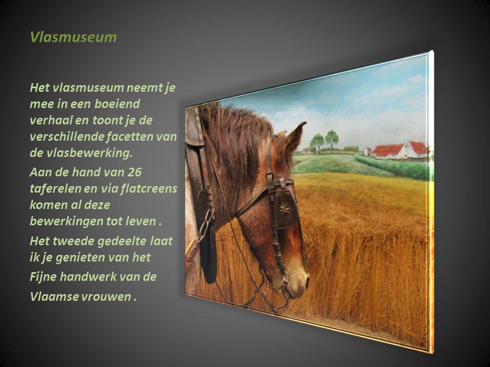 Vlasmuseum Het vlasmuseum neemt je mee in een boeiend verhaal en toont je de verschillende facetten van de vlasbewerking.