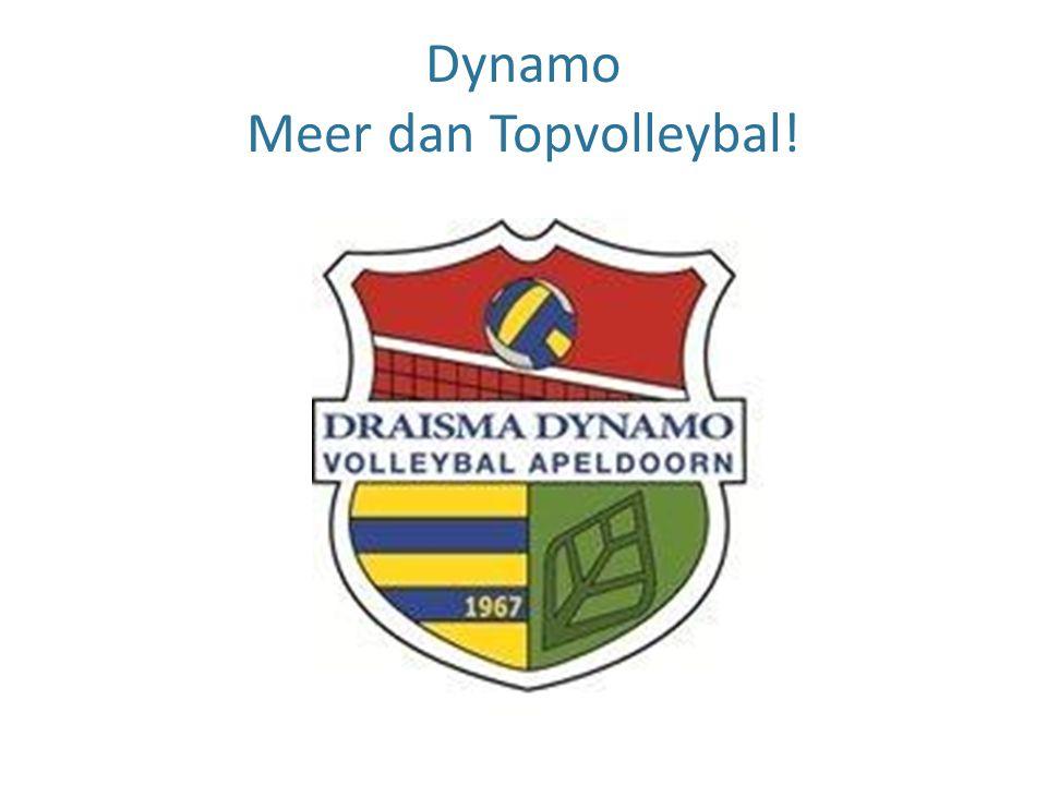 Dynamo Meer dan Topvolleybal!