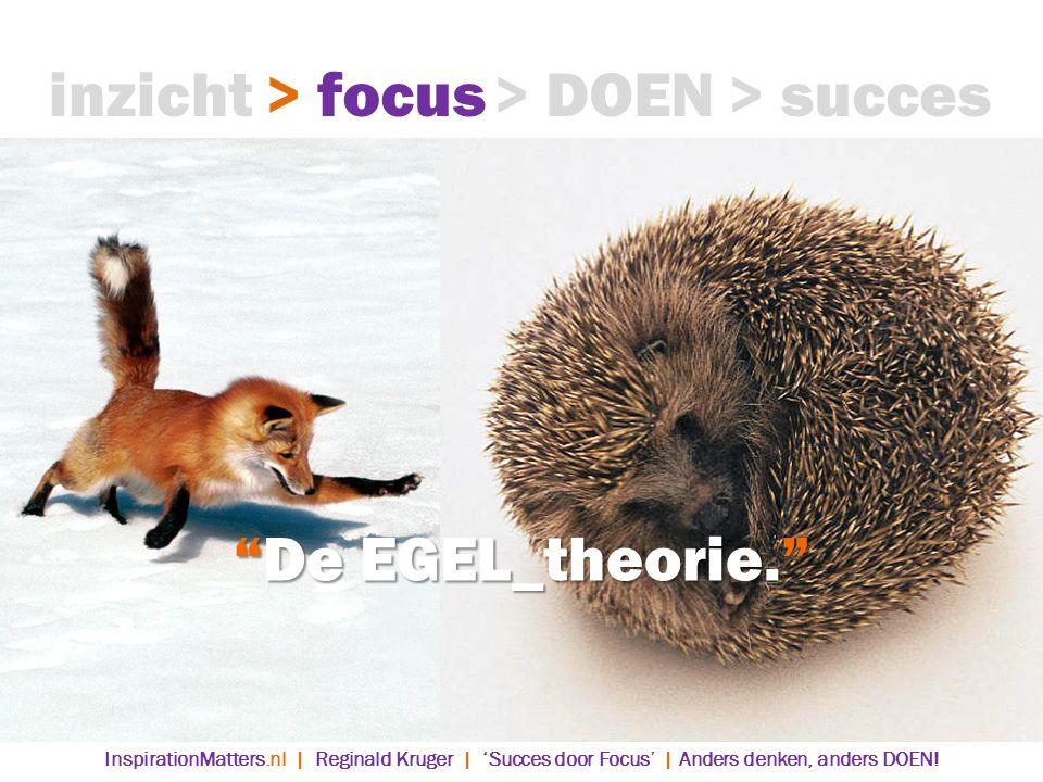 inzicht > focus > DOEN > succes De EGEL_theorie.