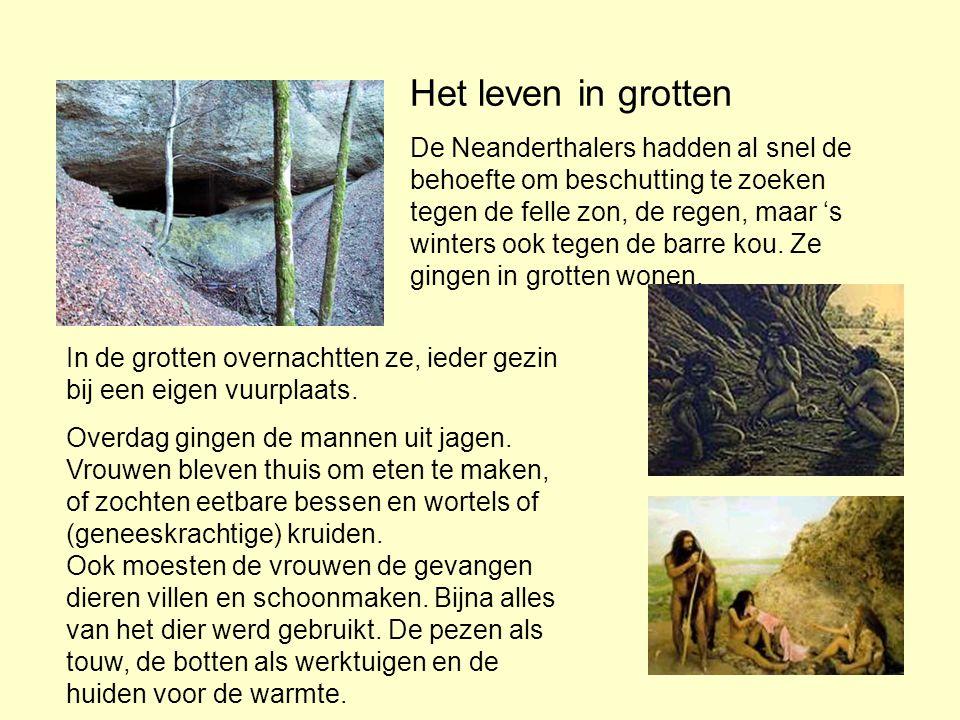 Het leven in grotten