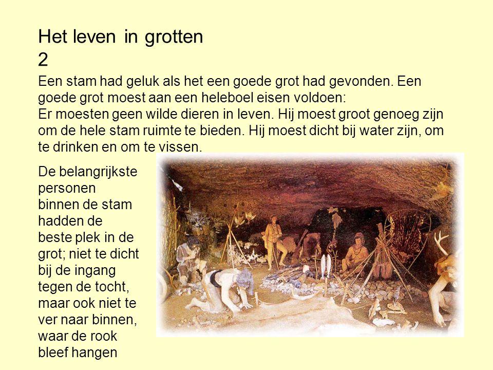 Het leven in grotten 2