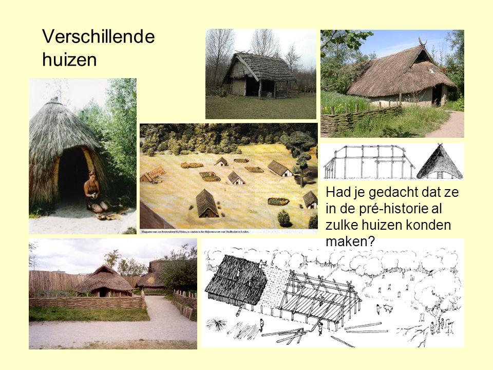 Verschillende huizen Had je gedacht dat ze in de pré-historie al zulke huizen konden maken