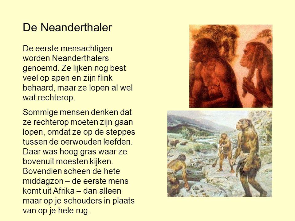 De Neanderthaler