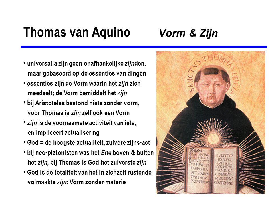 Thomas van Aquino Vorm & Zijn