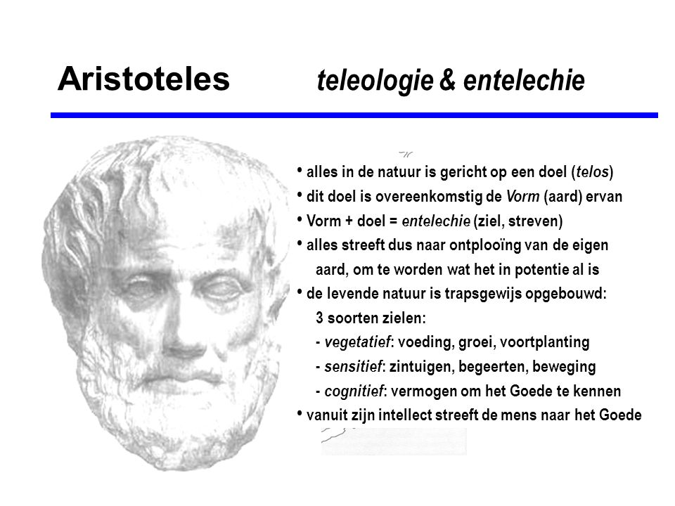 Aristoteles teleologie & entelechie