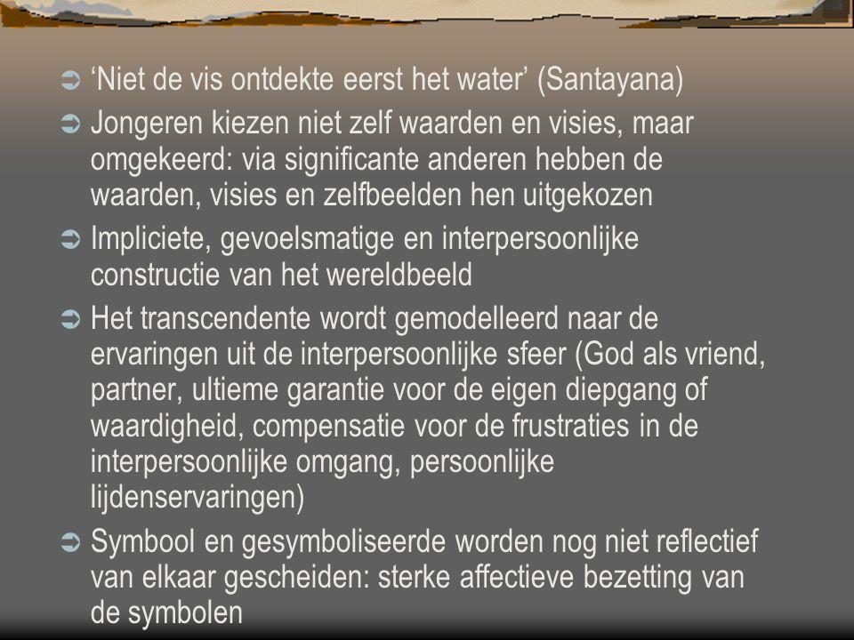 'Niet de vis ontdekte eerst het water' (Santayana)