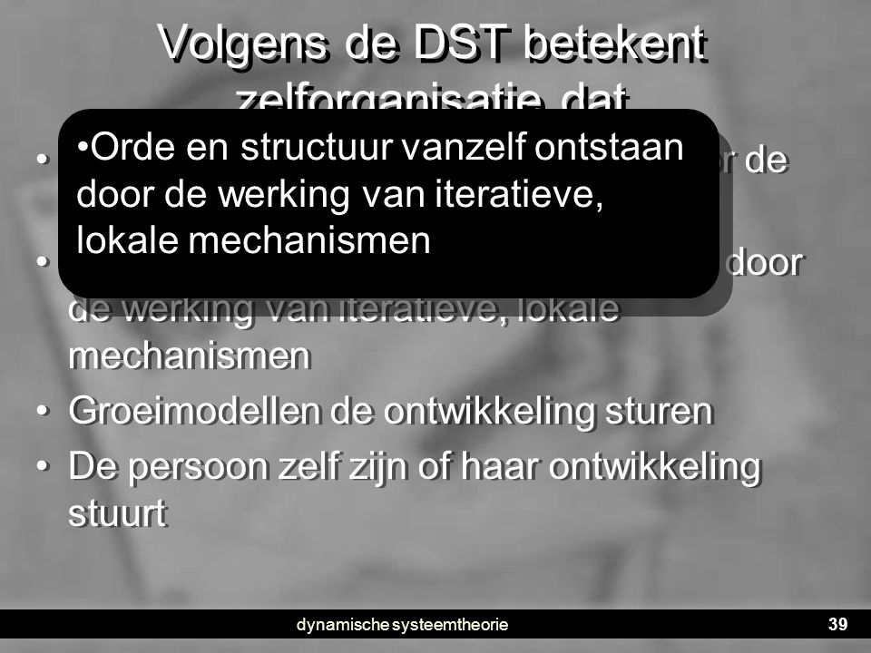Volgens de DST betekent zelforganisatie dat