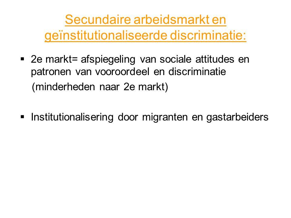 Secundaire arbeidsmarkt en geïnstitutionaliseerde discriminatie:
