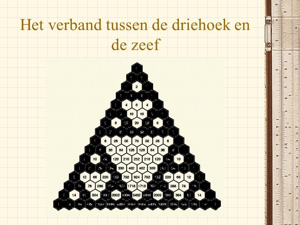 Het verband tussen de driehoek en de zeef