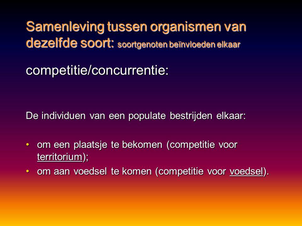 competitie/concurrentie: