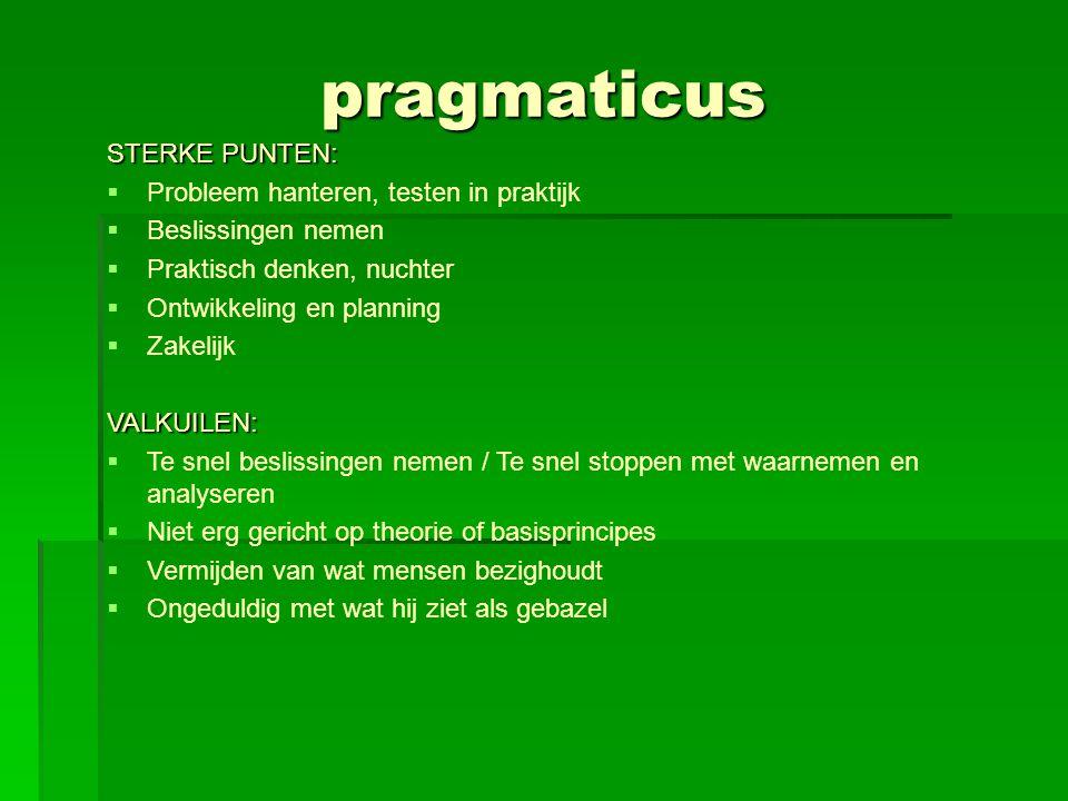 pragmaticus STERKE PUNTEN: Probleem hanteren, testen in praktijk