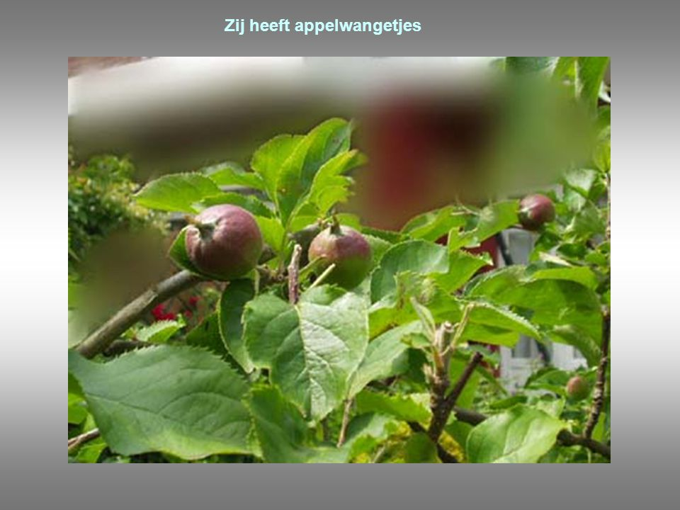 Zij heeft appelwangetjes