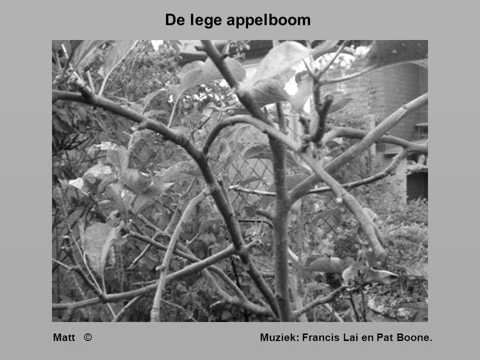 De lege appelboom Matt © Muziek: Francis Lai en Pat Boone.