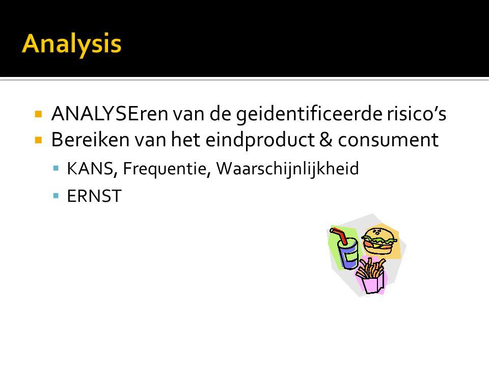 Analysis ANALYSEren van de geidentificeerde risico's