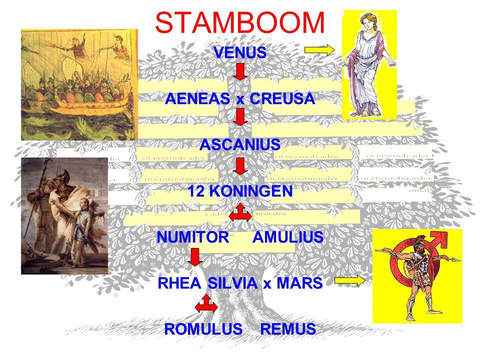STAMBOOM VENUS AENEAS x CREUSA ASCANIUS 12 KONINGEN NUMITOR AMULIUS