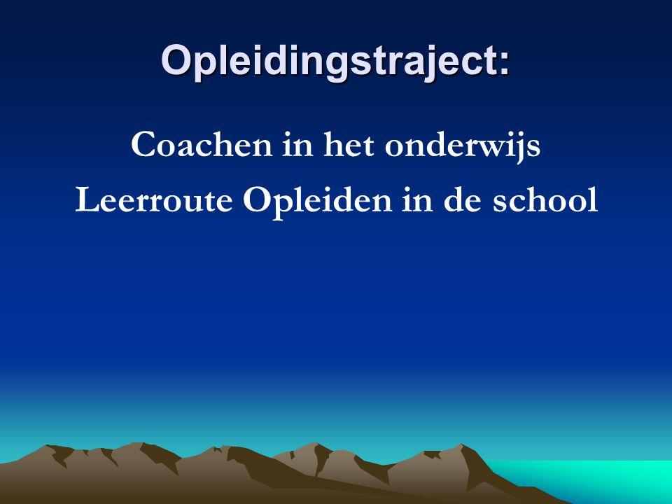 Coachen in het onderwijs Leerroute Opleiden in de school