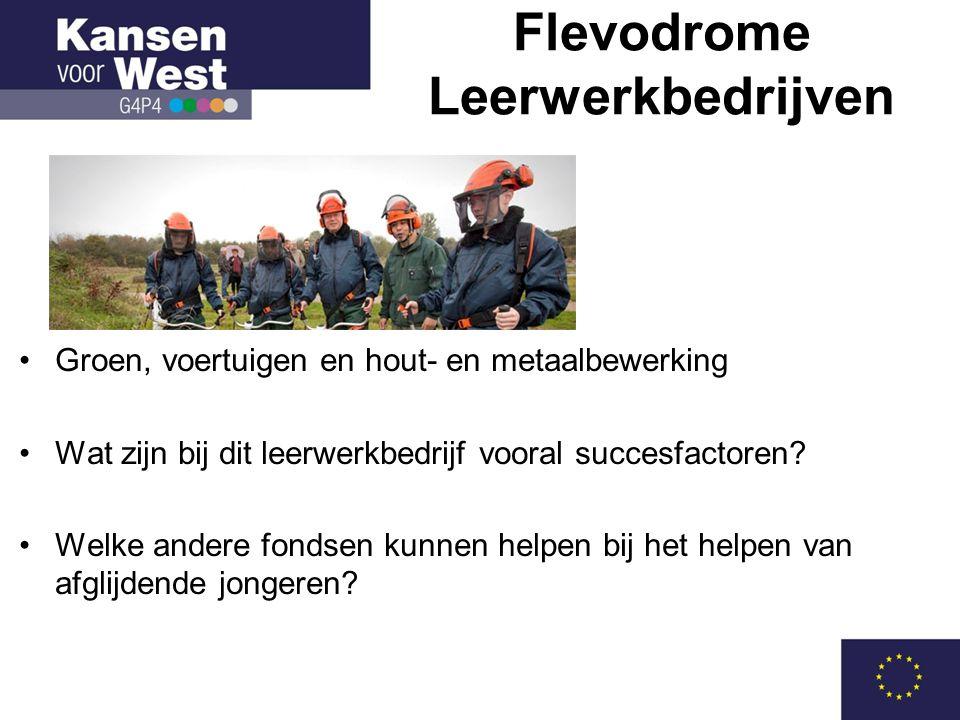 Flevodrome Leerwerkbedrijven