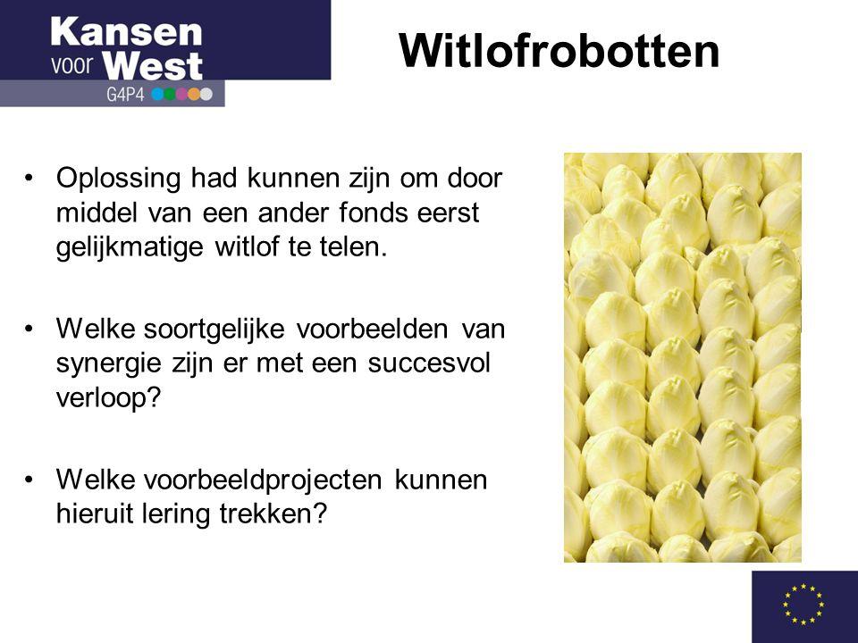 Witlofrobotten Oplossing had kunnen zijn om door middel van een ander fonds eerst gelijkmatige witlof te telen.