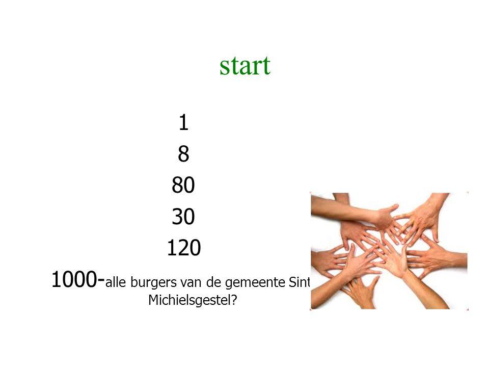1000-alle burgers van de gemeente Sint-Michielsgestel