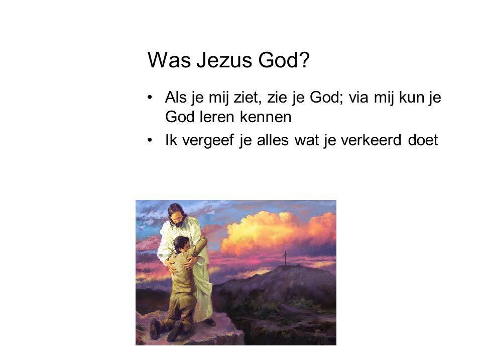 Was Jezus God. Als je mij ziet, zie je God; via mij kun je God leren kennen.