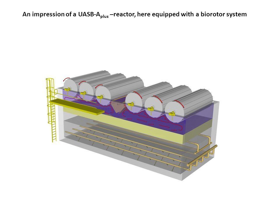 An impression of a UASB-Aplus –reactor, here equipped with a biorotor system