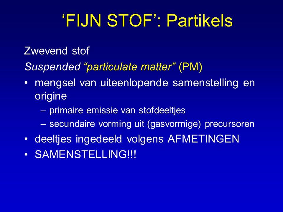 'FIJN STOF': Partikels
