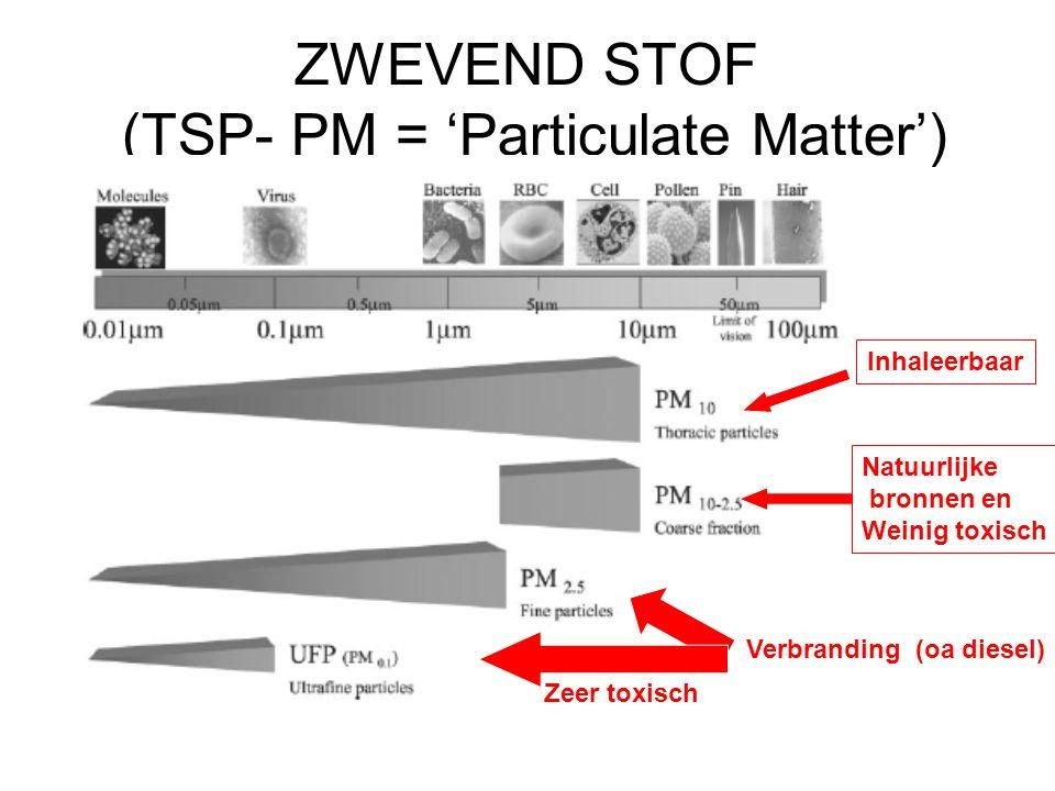 ZWEVEND STOF (TSP- PM = 'Particulate Matter')